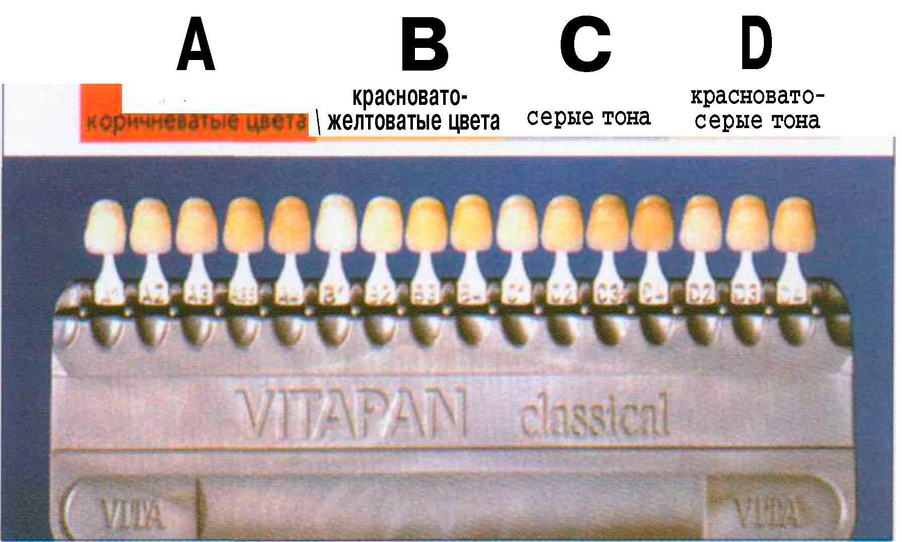 Шкала расцветки зубов vita