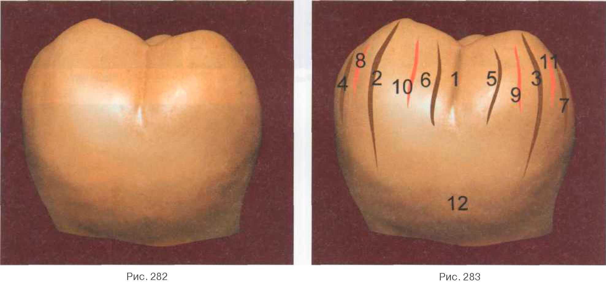 Восстановление зубов — способы реставрации разрушенного зуба, цены, фото